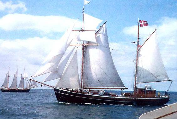 Havfiskeri på Øresund Helsingør
