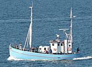 Helsingør Havfiskeri lystfiskere Juventus