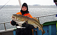 Deep-sea fishing angling trips and fishing on the Sound of Elsinore Elsinore
